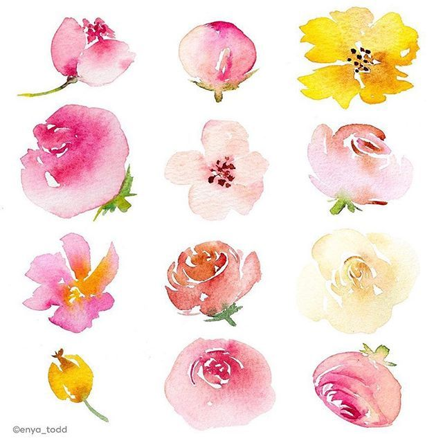 Simple And Pretty Loose Flowers By Artist Enya Todd Please Make