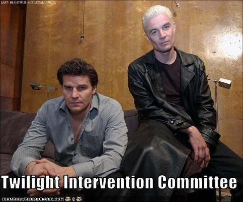 Twilight Intervention.