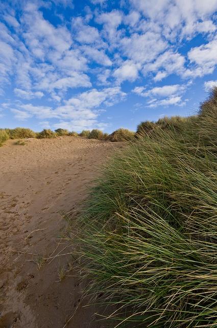 Dunes at Croyde Bay in North Devon #UK