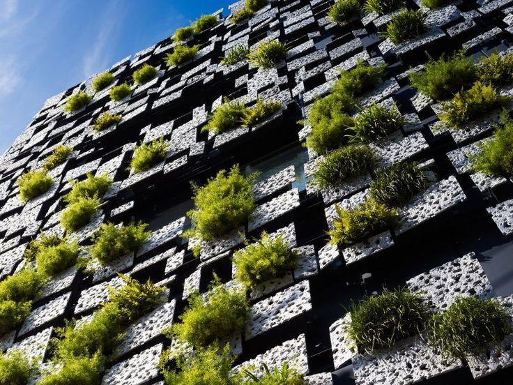 Interesująca fasada budynku z wkomponowaną zielenią #fasade #plant #architecture: Kengo, Living Wall, Green Wall, Kengokuma, Green Buildings, Vertical Gardens, Green Cast, Architecture, Wall Gardens