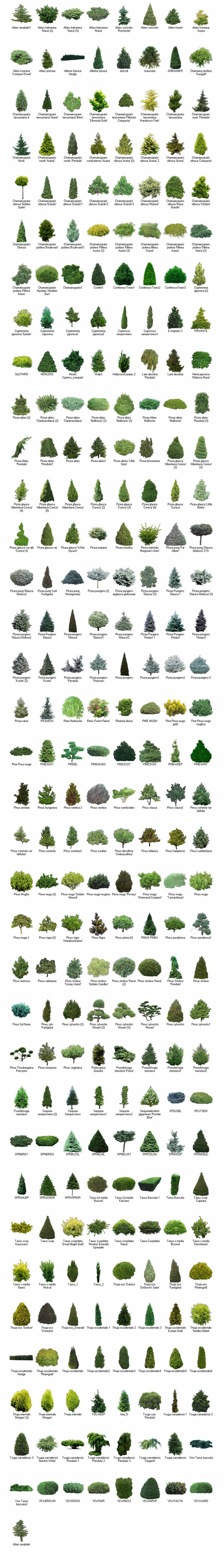 New Landscape Design software Reviews
