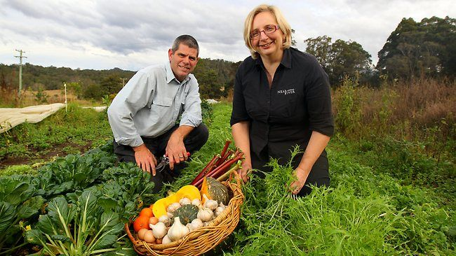 Mention of Butcherman and its founder Paul Tory at Daily Telegraph: http://www.dailytelegraph.com.au/news/nsw/vegie-farmers-find-cyber-sales-fruitful/story-e6freuzi-1226465067559