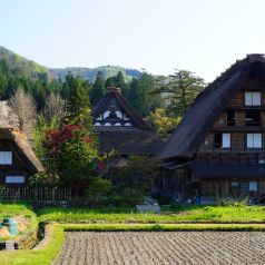 """Gassho zukuri  Shirakawago nestled in a rural setting reminiscent of ancient Japan, Shirakawa-go is world famous for its steep, thatched-roof """"gassho-zukuri"""" style of traditional farmhouses, some of which offer an overnight stay as family-run inns. The village is a listed UNESCO World Heritage Site."""