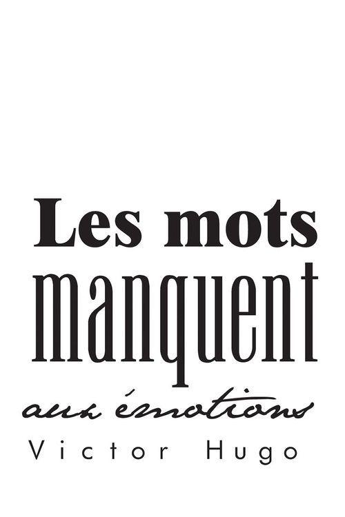 Les émotions ne peuvent être traduites réellement par des mots