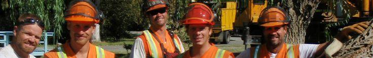 Action Tree Service provide full tree service in Kelowna, BC
