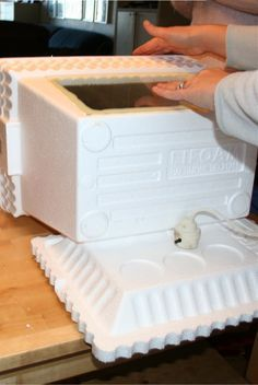 The Empowered Mom: How to Make a Homemade Egg  Incubator It's science fair time!