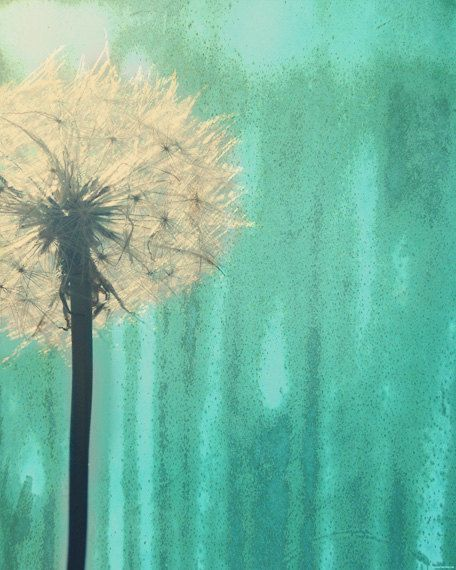 Dandelion Art Print - Aqua Green Nursery Childrens Room Home Decor Wall Flower Floral Surreal Photography. $25.00, via Etsy.