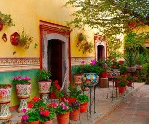 Wonderful Mexican Garden And Flowers Wallpaper