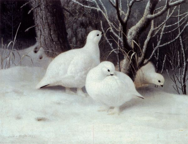 """Ptarmigans"" - ""Riekkoja"" (1873) Ferdinand von Wright (1822-1906)"