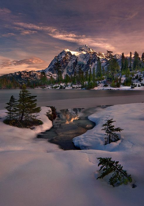 Picture Lake, Mt Shuksan, Washington, USA