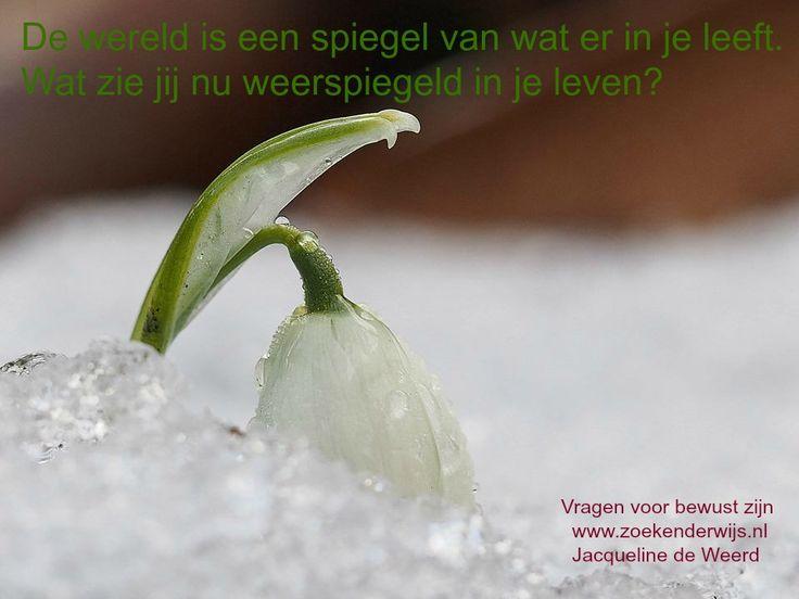 De wereld is een spiegel van wat er in je leeft. Wat zie jij nu weerspiegeld in je leven? Vragen voor bewust zijn. www.zoekenderwijs.nl