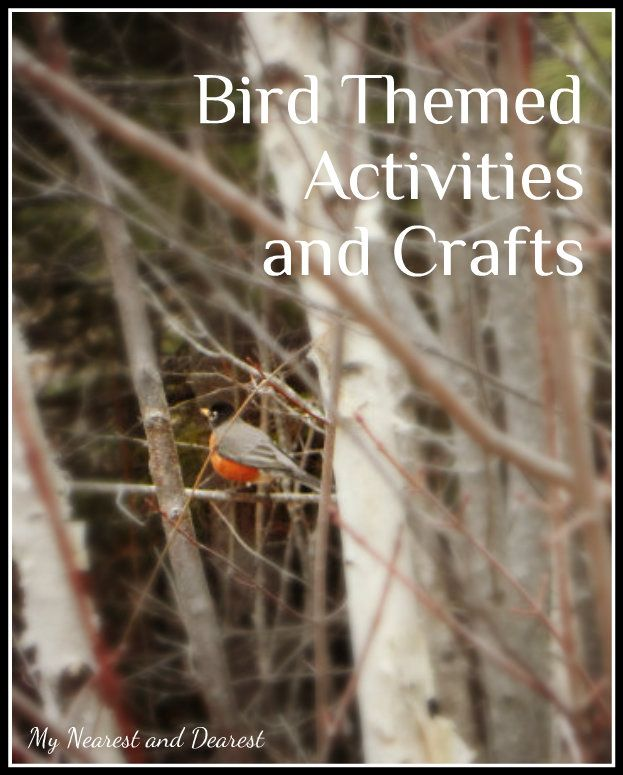 Bird activities and crafts from My Nearest and Dearest blog. All kinds of ideas for a preschool bird theme or to do at home.