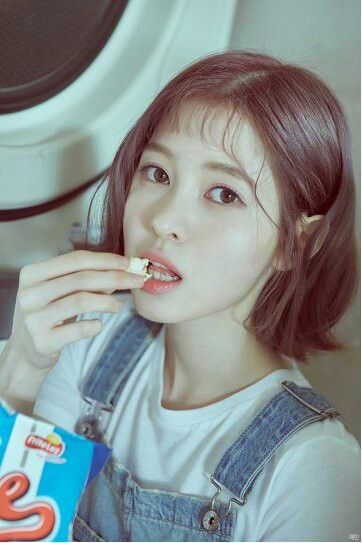 "[DIA] Baek Yebin Individual Concept Photo Album ""YOLO"""