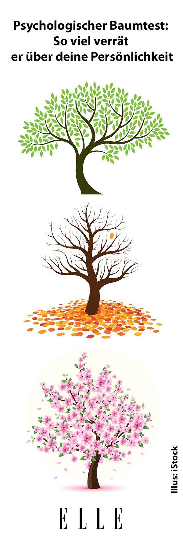 Die besten 25+ Baumkrone Ideen auf Pinterest | Baum vorgarten ...