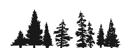 Pine tree silhouette Royalty Free Stock Photo