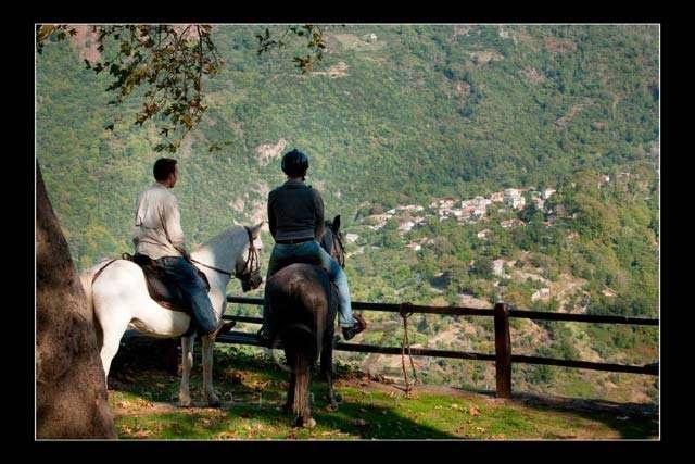 Activities in Portaria