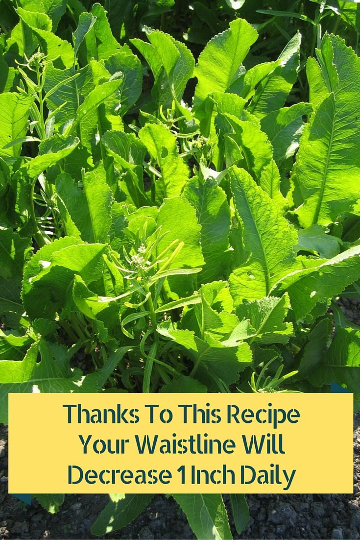 Thanks To This Recipe Your Waistline Will Decrease 1 Inch Daily Read more at: http://www.alltraditionalherbs.com/thanks-to-this-recipe-your-waistline-will-decrease-1-inch-daily/