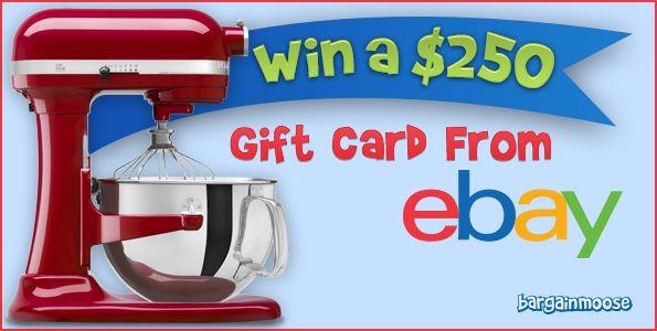 @bargainmoose Contest: Win a $250 eBay Gift Card Photo