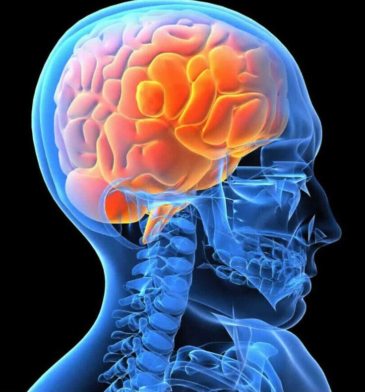 OHSS India - #Neurosurgery as well as #Procedures Related to It Visit here: https://goo.gl/0d9yPS