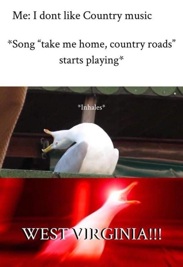 15 Country Music Memes For The Lovers The Haters Country Music Meme Music Memes Country Music Songs