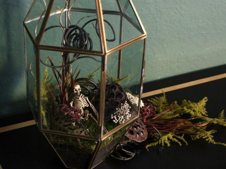 pflanzen terrarium halloween selber machen einfach skelett deko