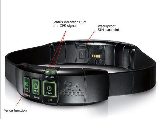 """This dog collar has a built-in GPS receiver and """"mobile phone"""".can lead you right to your dog."""