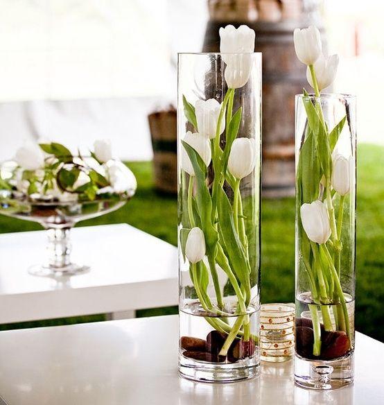 Tulpaner i glascylindrar