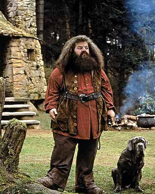 Rubeus Hagrid - Keeper of Keys and Grounds at Hogwarts. And, of course, Fang, ....... bloody coward.