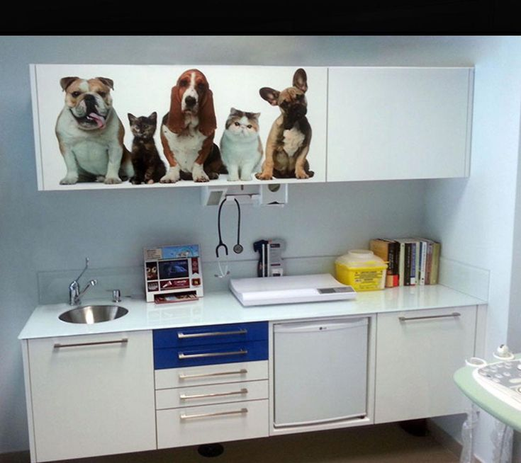 dog'snutrition Pet clinic, Vet clinics, Veterinary clinic