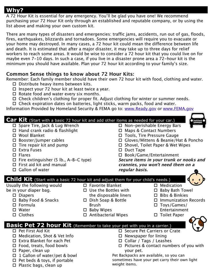 25 Unique Hurricane Preparedness Checklist Ideas On Pinterest