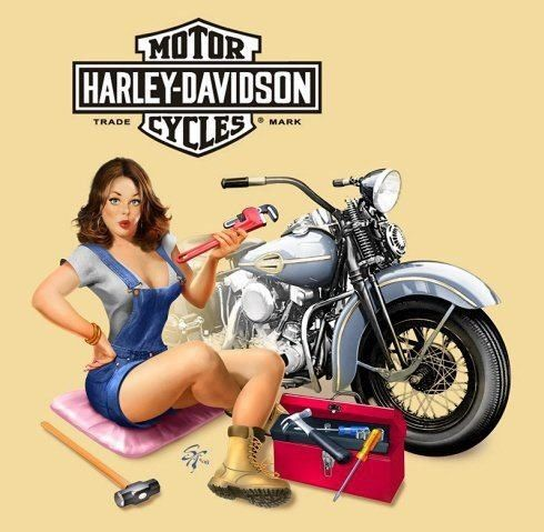 25 best ideas about pin up motorcycle on pinterest for Harley davidson motor credit