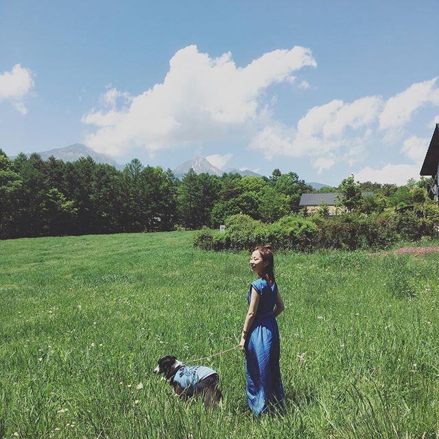 平日はむちゃくちゃお仕事頑張って、休日は「自然の空気を吸収」がマイブーム❤️ツンデレな愛犬Sと🐕コーディネートはデニム風のサロペットに見えてないけどぺったんこサンダル。  #高原 #自然 #休日 #休日の過ごし方 #lovenature #nature #mercuryduo #サロペット #サロペットコーデ #ボーダーコリー #愛犬 #散歩 #散歩コーデ
