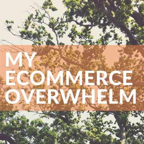 E-commerce Overwhelm... Lately I've had a few people ask me why I decided to go with Shopstar, so I thought I would share the rather rough thoughts I wrote while I was in the process of making a decision about which e-commerce solution to use for Furoshiki Dreaming, my own online shop.