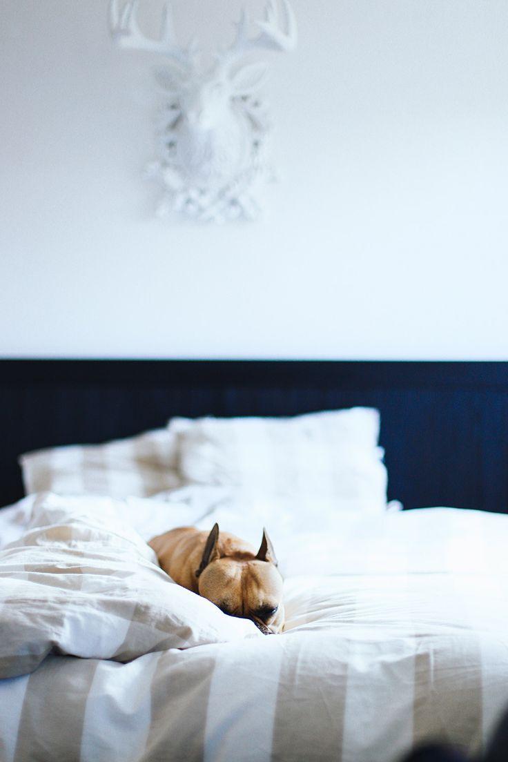 Attractive 5 Tipps Für Ein Gemütliches Schlafzimmer!