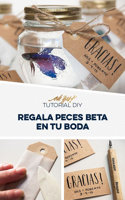Detalles para invitados bodas. Regala un pez beta como regalo de invitados, un facilísimo tutorial diy por Oh Yes! www.ohyesweddings.com