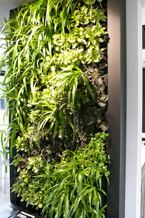 Good idea for herbs. ♂ Eco friendly home deco interior vertical garden