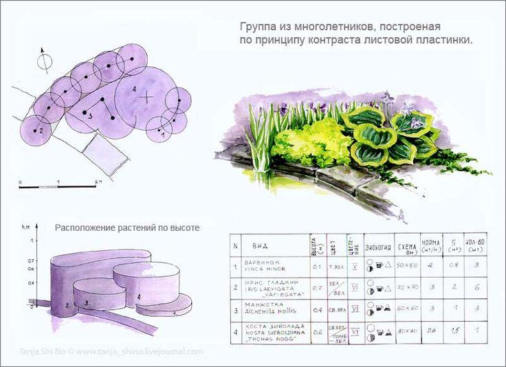 tanja_shi_no   О проектировании цветников в саду.