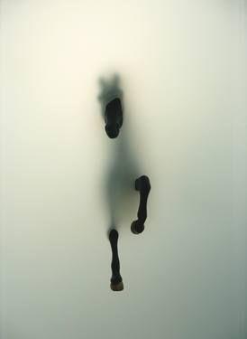 """Subversion,"" original figurative photograph by artist Miriam Sweeney available at Saatchi Art #SaatchiArt"