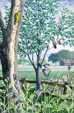 Beech tree, mountain ash and turnip field. C. F. Tunnicliffe