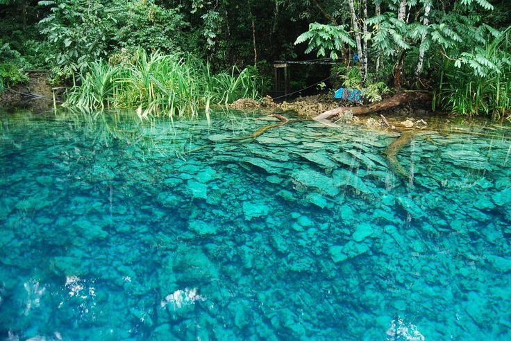 Labuan Cermin, East Kalimantan | Freshwater on the surface, saltwater underneath, and they never mix in this mirror lake.