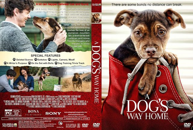 a dogs way home dvd