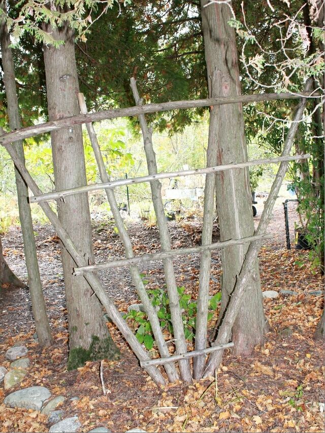 358 best crafts things to make out of tree branches for Wood garden trellis designs