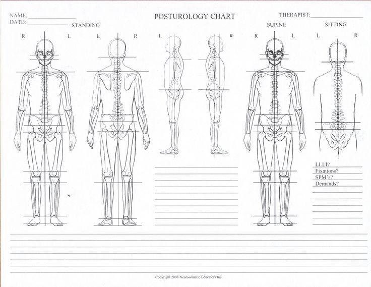 posturology-chart-blank-e1319630941505.jpg 3.291×2.546 píxeles