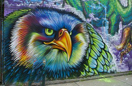 graffiti, kunstwerk, adelaar hoofd, kleurrijk, muur, straat