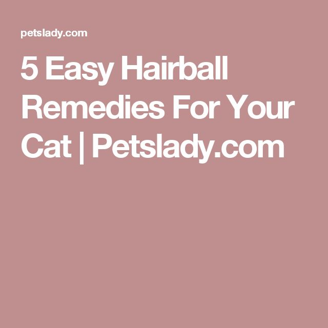 5 Easy Hairball Remedies For Your Cat | Petslady.com