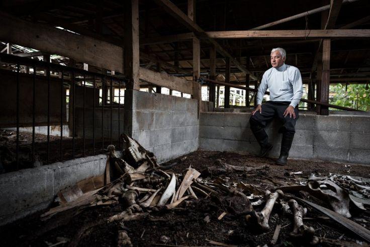 Ο Naoto Matsumara στη φάρμα του που πλέον είναι γεμάτη σκελετούς των ζώων του