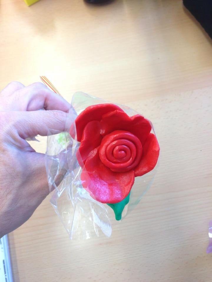 Rosa de Sant Jordi P5.
