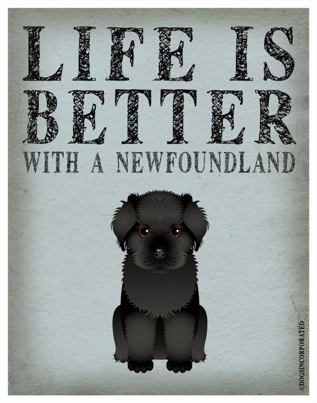 Life is Better with a Newfoundland Art Print 11x14 - Custom Dog Print. 29.00, via Etsy.