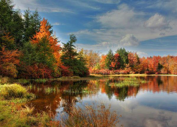 Lake Jean Reflections