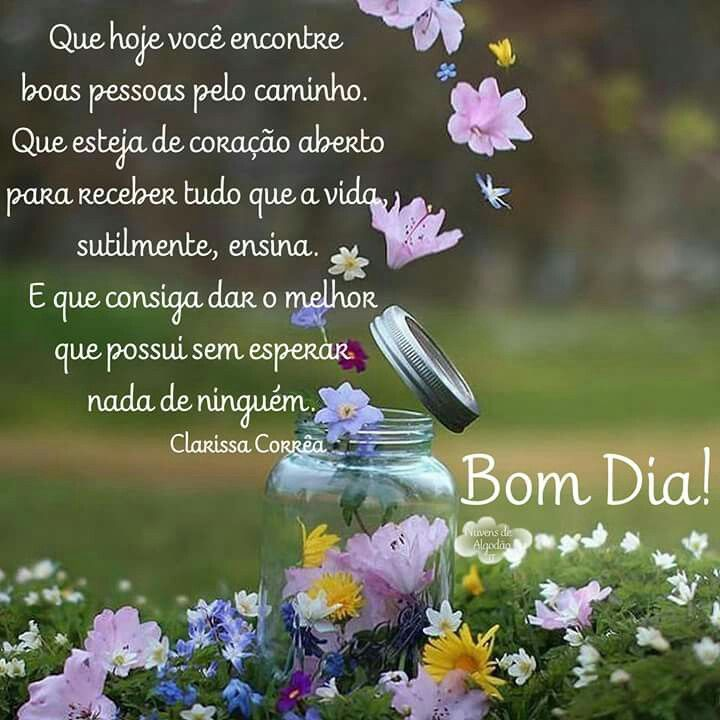 Good Morning Everyone Que Significa : Best bom dia boa noite images on pinterest